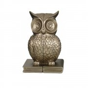 Soft Gold Coloured Owl Sitting on a Book Pair of Bookends